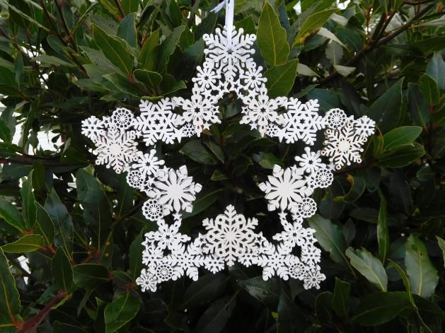 White Star Xmas